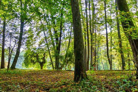 حماية الطبيعة , التنوع البيئي