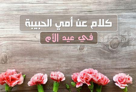كلام عن أمي، عيد الأم، أمي الحبيبة، أغلى رسالة للأم