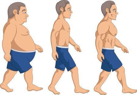 السمنة ، الوزن الزائد ، انقاص الوزن ، الوزن المثالي ، السمنة المفرطة