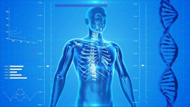 صورة رمزية , هشاشة العظام ,Osteoporosis