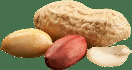 صورة , فول سوداني , حمية البروتين