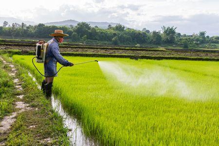 صورة , المبيدات الحشرية , المواد الكيميائية