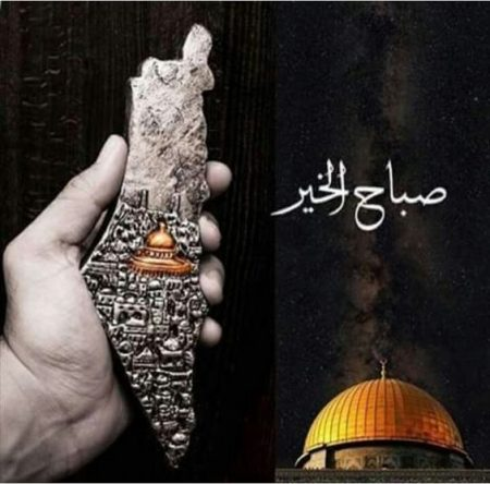 صور دعم فلسطين