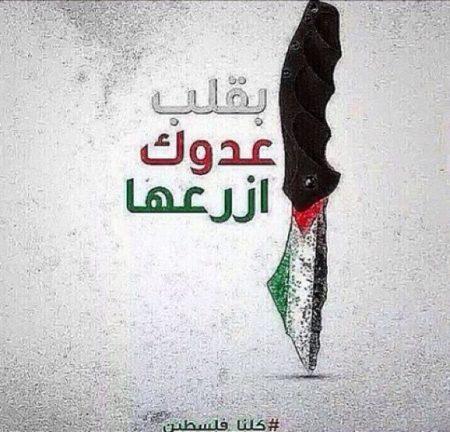 صورة العلم الفلسطيني , بقلب عدوك ازرعها
