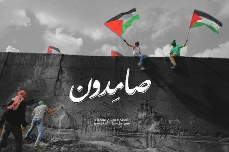 صامدون , صور دعم لفلسطين