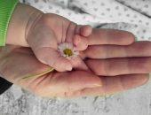 أطفال الأنابيب ، العقم ، تأخر الإنجاب ، الأمراض الوراثية ، الحمل و الولادة