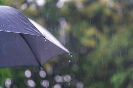 صورة , المطر , الشتاء , البرودة