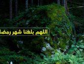 شهر مبارك,اللهم بلغنا رمضان