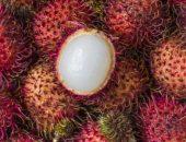 صورة , الرامبوتان , الفواكه