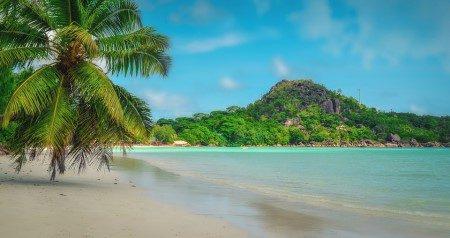 سيشل ، الشواطئ الرملية ، جزيرة ماهي ، فيكتوريا ، الفواكه ، السباحة ، تشيكونغونيا