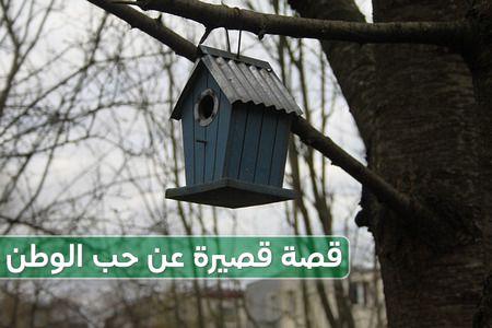 قصة قصيرة , حب الوطن , السعودية , مصر