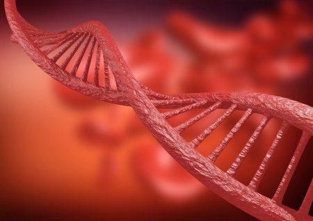 الخلايا الجذعية ، التهاب المفاصل ، العظام ، الديسك ، فقرات الظهر