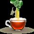 ما هي الطريقة الصحية لتناول مشروب الشاي