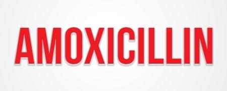 الأموكسيسيللين Amoxicillin