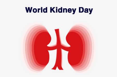 World Kidney Day,اليوم العالمي للكلى