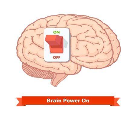 الدماغ ، الذاكرة ، الغذاء السليم ، البطاطا ، الدهون