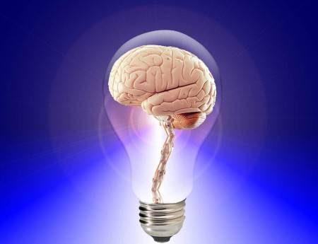 ممارسة الرياضة ، الاختبارات الدراسية ، التركيز ، الدماغ ، الذاكرة ، التوت ، العنب ، الأغذية ، السعرات الحرارية ، الفاكهة