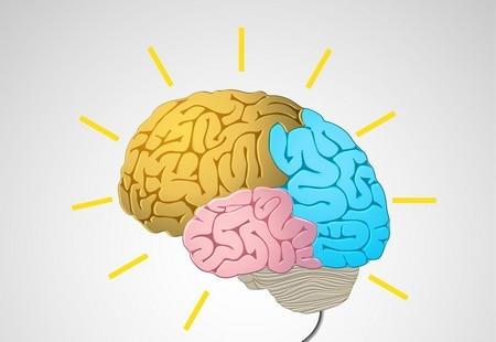 صورة , الدماغ , أورام الغدة النخامية , الغدة النخامية