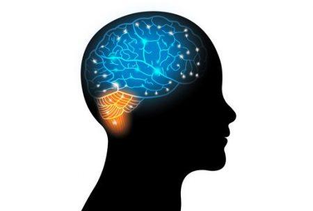صورة , داء الصرع , التشنجات , الدماغ
