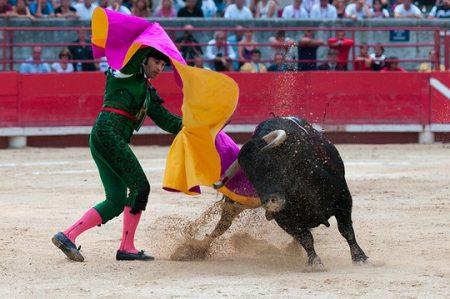 مصارعة الثيران , Bullfighting