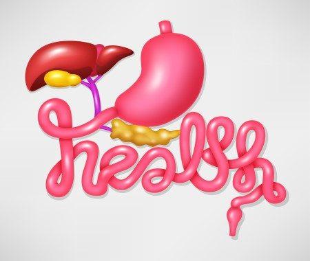 المعدة ، أورام الجهاز الهضمي ، سرطان القولون ، الأورام السرطانية