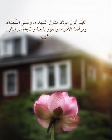 اللهم أنزِل موتانا منازل الشهداء؛ وعيش السعداء؛ ومرافقة الأنبياء والفوز بالجنة والنجاة من النار؛ يا كريم