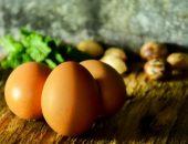 مادة الكولين , egg , صورة , البيض