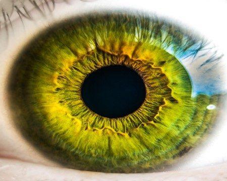 شبكية العين ، مرضى السكري ، اعتلالات العيون ، قطرة العين