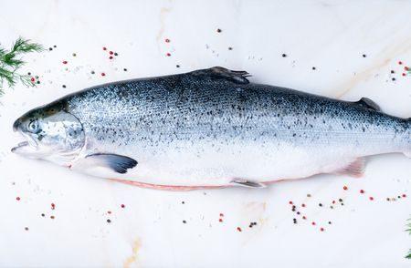 صورة , سمك السلمون , الكافيار , البطارخ