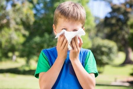 صورة , الإنفلونزا , إلتهابات الجيوب الأنفية