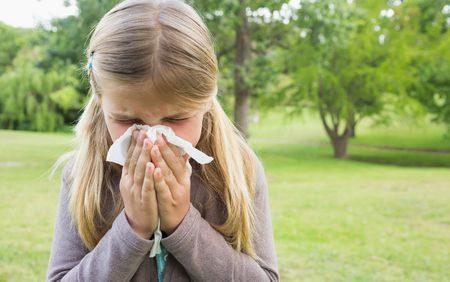 صورة , نزلات البرد والحساسية , الإنفلونزا