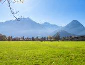 أهمية, المساحات الخضراء, green land , صورة