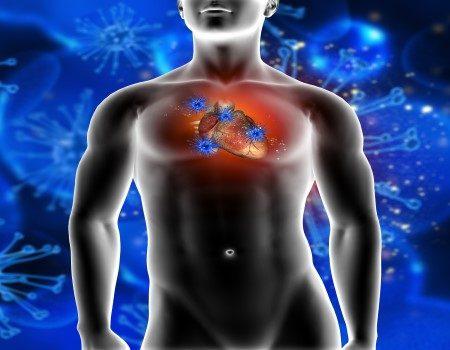 القلب ، اعتلالات القلب ، امراض القلب ، تصلب الشرايين ، الجلطات القلبية