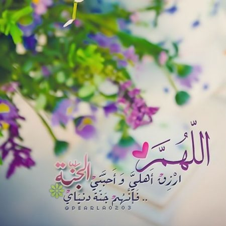 اللهم ارزق أهلي وأحبتي الجنة؛ فإنهم جنة دنياي
