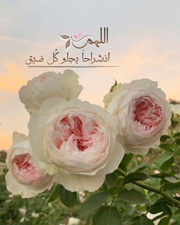 اللهم انشراحًا يجلو كل ضيق