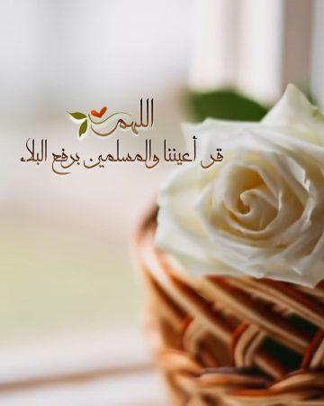 اللهم قر أعيننا والمسلمين برفع البلاء