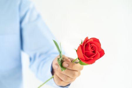 صورة , وردة , الزواج , الهدايا , العلاقة الزوجية