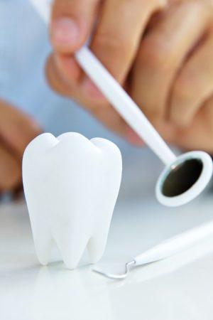 الميكرسكوب ، الأشعة السنية ، التهابات اللثة ، تركيب الأسنان
