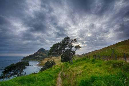 نيوزيلندا ، خليج الجزر ، المعالم السياحية ، كوينز تاون ، الجزيرة الشمالية ، فيوردلاند الحديقة الوطنية ، بحيرة تاوبو ، منتزه تونجاريرو الوطني