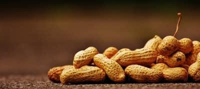 peanuts ,photo,فوائد,الفول السوداني