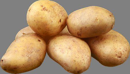صورة , البطاطس , الخضروات الدرنية