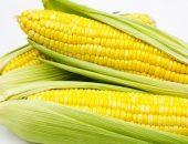 صورة , الحبوب , الذرة الحلوة , النشويات