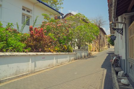 الطريق , the street , صورة
